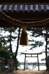 初冬の住吉神社にて