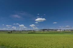 初秋の田園風景1