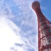 神戸ポートタワー1(昼景)