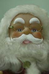 クリスマスセルポ?