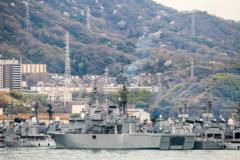 山桜と自衛艦