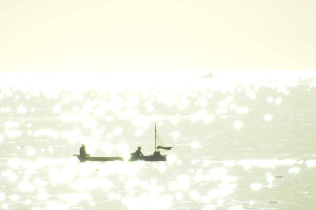 三浦の朝のきらきら