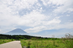 朝霧からの富士山です