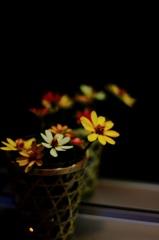 母の活ける花