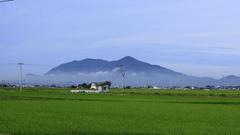 朝靄から弥彦山