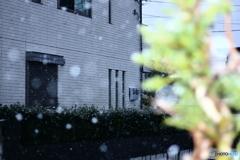❜18 初雪
