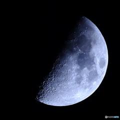 月齢7.46  宵月 上弦