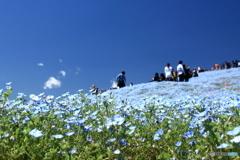 みはらしの丘・パノラマ写真風 B