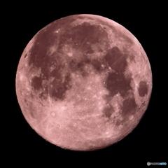 月齢15.03 ピンクムーン