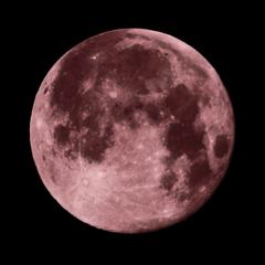 '21 ピンクムーン  月齢15.49