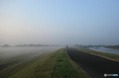 小貝川堤の朝もや