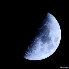 月齢7.74 上弦の月