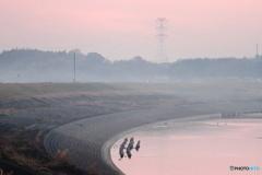 霞む小貝川堤