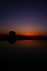 水田の夕暮れⅥ