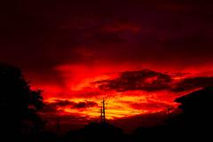 真の夕焼け