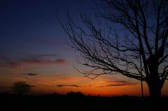 Evening