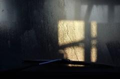 フロントガラスに写る窓の影を写す