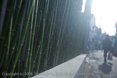 100204_09h24m12s_at[Harajuku]