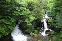 龍頭の滝 新緑