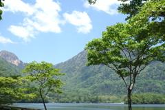日光の新緑 2 湯ノ湖にて
