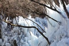 尾ノ内百景の氷柱 3