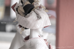 Japanese Doll Ⅴ