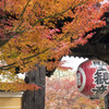 紅葉 - 金剛輪寺にて