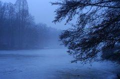 夕霧のドイツ-フランス庭園(4)