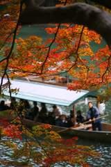嵐山公園 - 流れ流れて