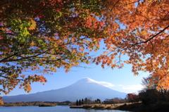 田貫湖  koyo 富士山