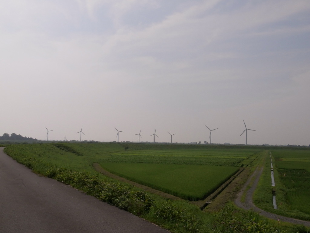 風車盛りだくさん