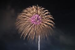富士川花火大会