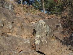 新年初登山のぼり口付近