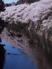 神田川河畔