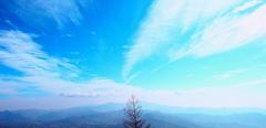 標高1900m