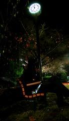 公園の寂しさ