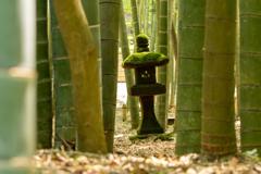 竹林の五輪塔