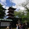 夏の上野公園を散歩する