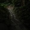 小石川後楽園の道を行く