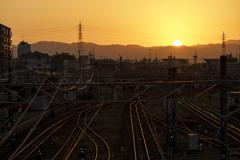 ターミナル駅の夜明け