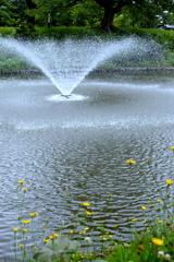 お堀の噴水