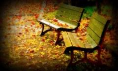 語り合う椅子