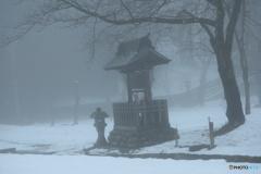 霧の朝の お散歩