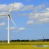 庄内平野と風車