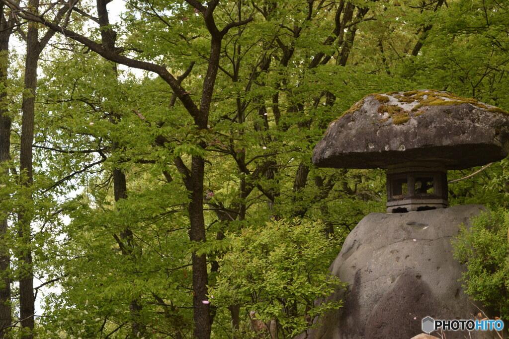 新緑と石塔