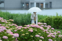 雨の土門拳記念館