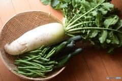 買ってきたばかりの野菜