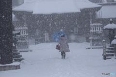 吹雪の中、参拝する人