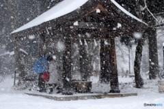 吹雪の中の 手水舎