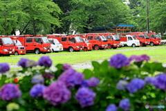 並んだ消防車